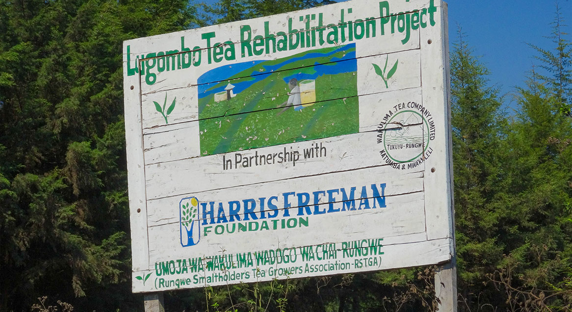 sign of Tea rehabilitation project in farms of Tanzania in partnership with Harris Freeman Foundation