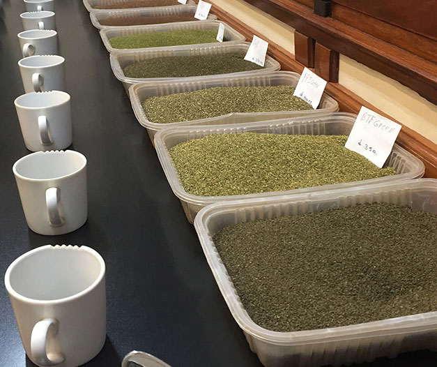 tray of variety of tea